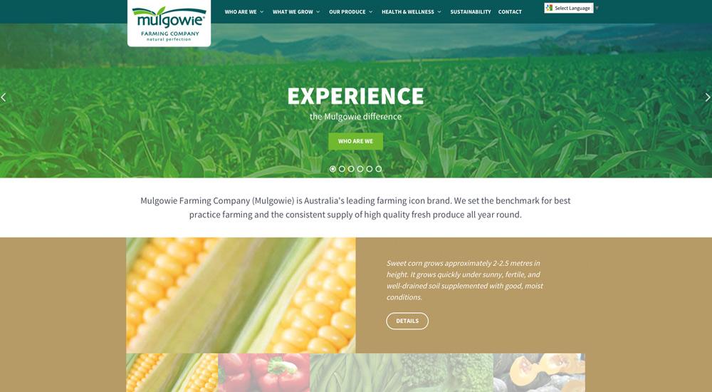 Mulgowie Farming