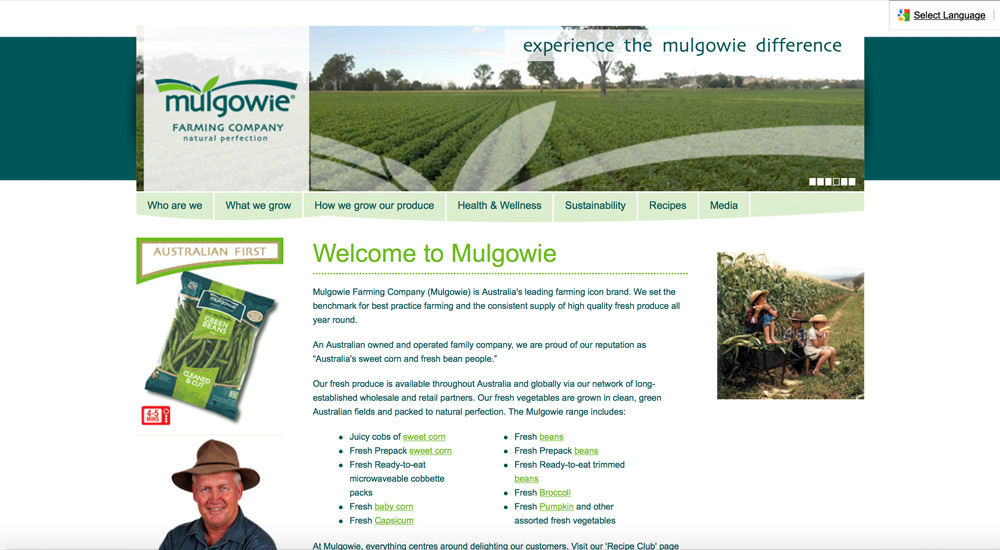 Mulgowie old site